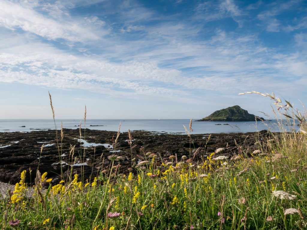 the mewstone island from wembury point